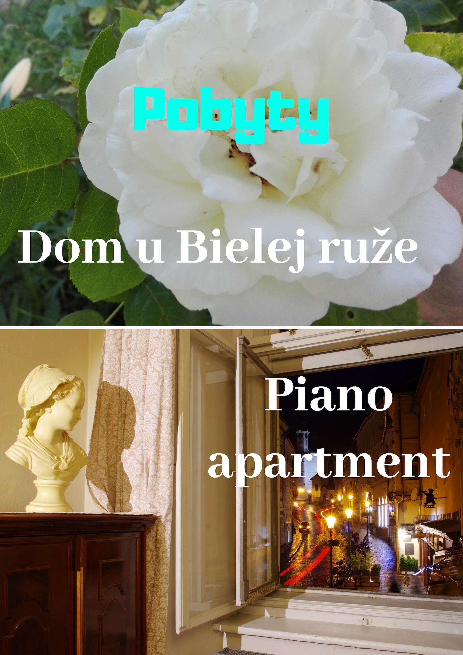 Koncerty a umelecké vystúpenia (1)